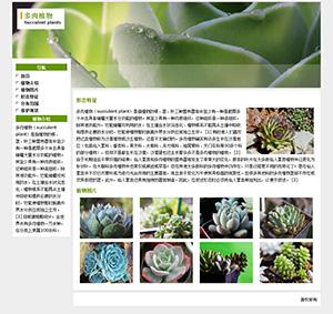 多肉植物学生网页