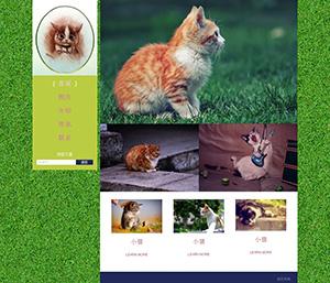 小猫可爱网页成品